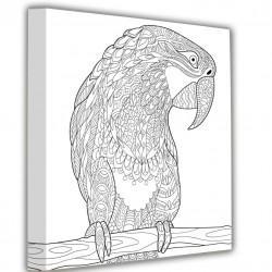 Obraz na stenu Papagaj